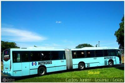 Vis penis i bus